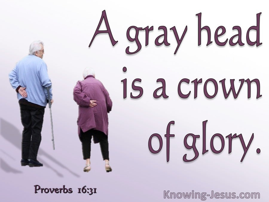 Proverbs 16:31 Gray Hair Is A Crown of Glory (purple)